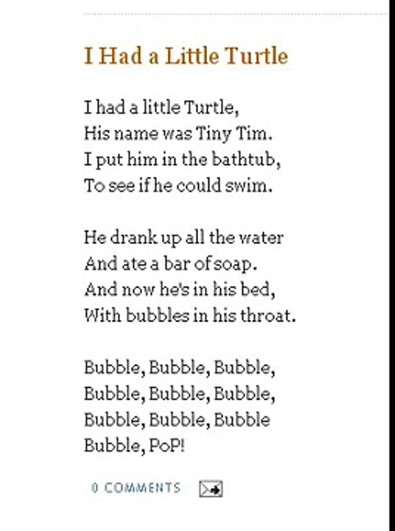 I Had A Little Turtle Nursery Rhymes