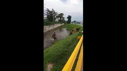 IMAGENS FORTES: Vídeo mostra atropelamento de adolescente na via Dutra, no RJ