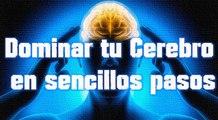 Dominar tu cerebro en sencillos pasos