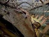 DOCUMENTAL El Caso del Submarino Hunley-documental submarino guerra civil americana