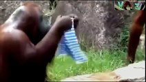 FunnY Pet Dog Humping/Mating a Girl Funny Videos Fails 2015 Youtube