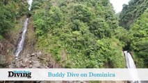 World's Best Dives: Buddy Dive Dominica