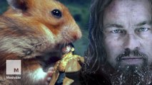 'The Hamster Revenant' is the brutal sequel you need to see