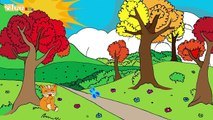 Lasino e il cucù canzone per bambini Canzone per bambini Yleekids