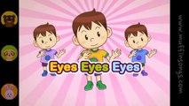 Eyes Eyes Eyes  Family Sing Along - Muffin Songs