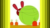 Un petit lapin ♫ Comptines maternelles et Chansons pour bébé en français