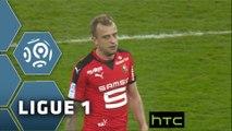 Toulouse FC - Stade Rennais FC (1-2)  - Résumé - (TFC-SRFC) / 2015-16
