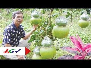 Những người nông dân tài hoa   HGTV
