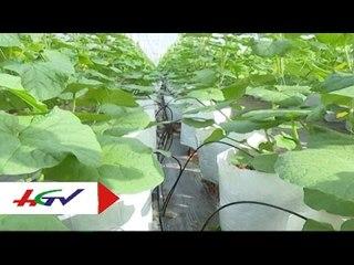 Áp dụng công nghệ cao vào sản xuất   HGTV