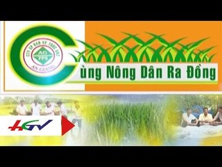 Diệt cỏ, trừ ốc vụ hè thu   HGTV