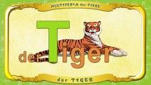 Multipedia der Tiere. Buchstabe T der Tiger
