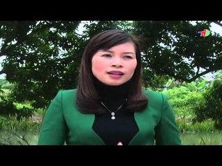 Chuyện tam nông tháng 2/2016 | HDTV