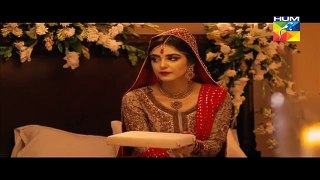 Mann Mayal Episode 06 HD Full Hum TV Drama 29 Feb 2016