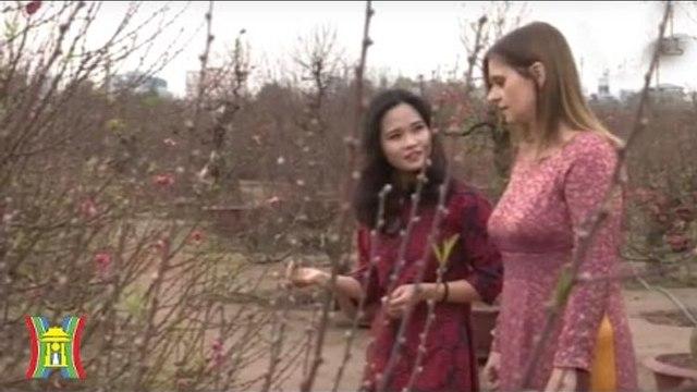 Thúc đẩy quan hệ hợp tác Việt Nam – Israel | HanoiTV