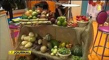Francois Hollande ne visite pas les stands de l'outremer au salon agricole