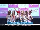 [K-STAR REPORT]APINK, special fan meeting for Korean Alphabet day/에이핑크, 한글날 맞아 팬들과 함께 '태극기 그리기'
