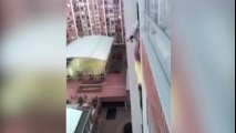De vértigo: sale por el balcón, escala y salva a perro en apuros