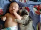 Funny Video Baby Clips - Cute Cat Loves Baby From Funny And Cute Cats And Babies Collection New - Vide