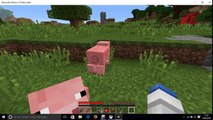 Minecraft Windows 10 edition Beta  #1 /Ein guter anfang! / Facecam