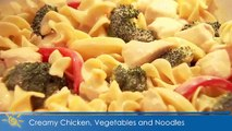 Creamy Chicken Vegetables and Noodles