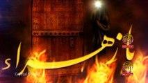 Subbat Ilaiya Baba Ayyam-e-Fatima Nohay 2016-17 by Hasnain Abbas HD