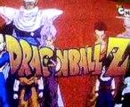 Dragon Ball z   DBZ   in Hindi