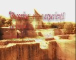 Proiectul Bucovina-bogatie si puritate