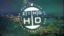 ZingHD - Cool Parties (Original Mix)