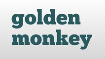 golden monkey meaning and pronunciation