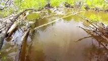 Balık Avı At Çek Nerede Burası Diyeceksiniz Video
