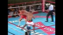 """Iron"" Mike Tyson Highlights  Biggest Boxers"
