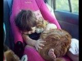 confira lindas imagens Bebês + gatos, lindas imagens,  fofas, incríveis, belas