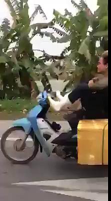 Funny Bike Riding Videos