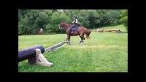 Quand ton cheval pense que l'obstacle est très très haut...