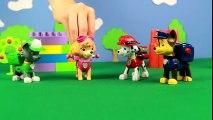 Dessins animés éducatifs pour enfants. Pat'patrouille joue à cache-cache  Dessins Animés Pour Enfants