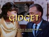 Gidget S01 17 I Love You I Love You I Love You I Think