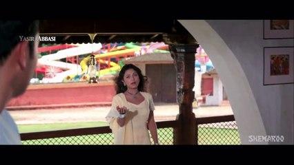 Hum Apni Taraf Se - Kumar Sanu, Alka Yagnik - Ansh 2002 [HD 720p]