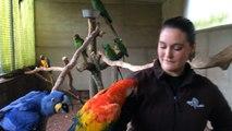 Lucile soigne les animaux au zoo de Jurques
