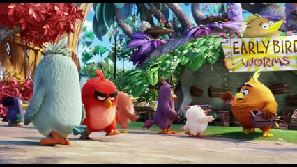 ANGRY BIRDS Bande Annonce #2 VF (Animation - 2016)