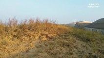 Normandie. Grandes marées à Blainville-sur-Mer - Manche