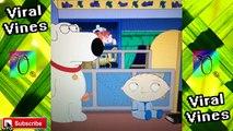 Family Guy Vine Compilation (Family Guy Vines 2015) | Viral Vines ®