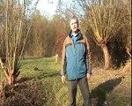Landroof op de Riethoek in Amsterdam Zuid Oost