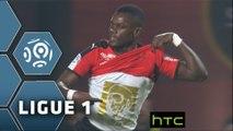 But Fallou DIAGNE (70ème) / Stade Rennais FC - Olympique Lyonnais - (2-2) - (SRFC-OL) / 2015-16