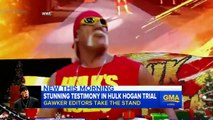Hulk Hogan Caught Using N-word In Racist Sex Tape Rant & Gets Fired By WWE