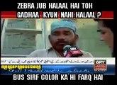 If Zebra Is Halal Donkey Is Halal Too - I Have Confirmed It - Butcher Sells Donkey