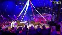 Le 18:18 - Animaux sauvages : refoulés de La Ciotat, les directeurs de cirques contre-attaquent