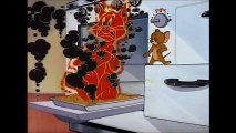 Tom and Jerry, 39 Episode - Polka-Dot Puss (1949)  Tom And Jerry Cartoons