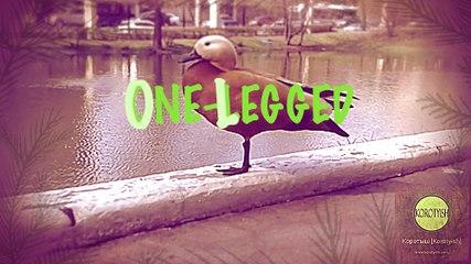 "One-Legged, the Short (Короткометражный фильм ""Одноногая"") [2016]"