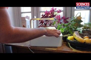 L'incubateur de tomates qui a séduit Kickstarter