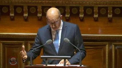 Harlem Désir - Débat préalable au Conseil européen du 17 et 18 mars 2016 - Sénat